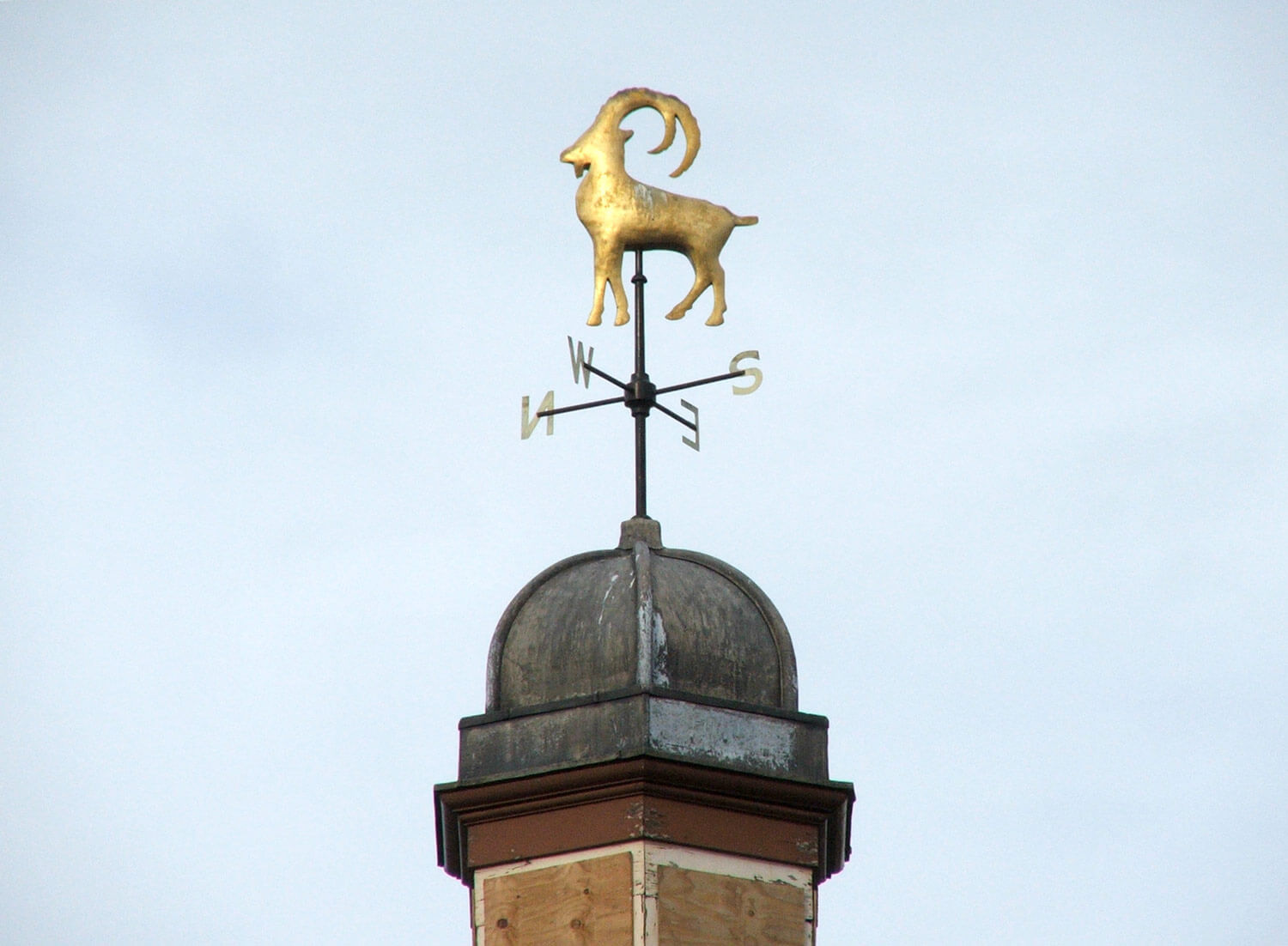 The Ibex weathervane on the roof of Friars Mill -