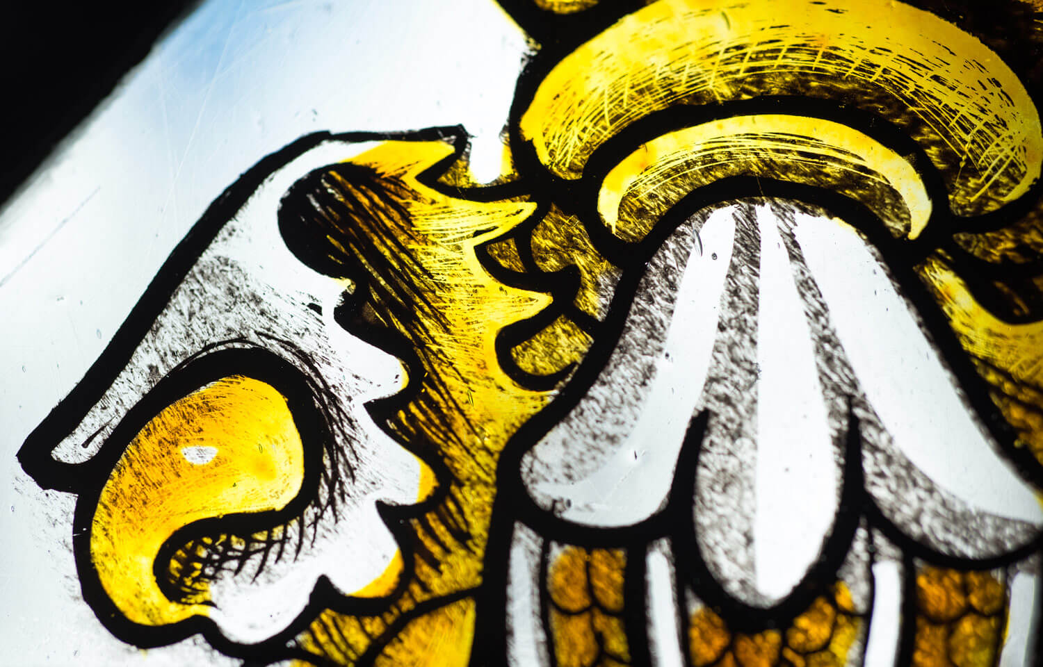 Painted glass on display at The Guildhall -