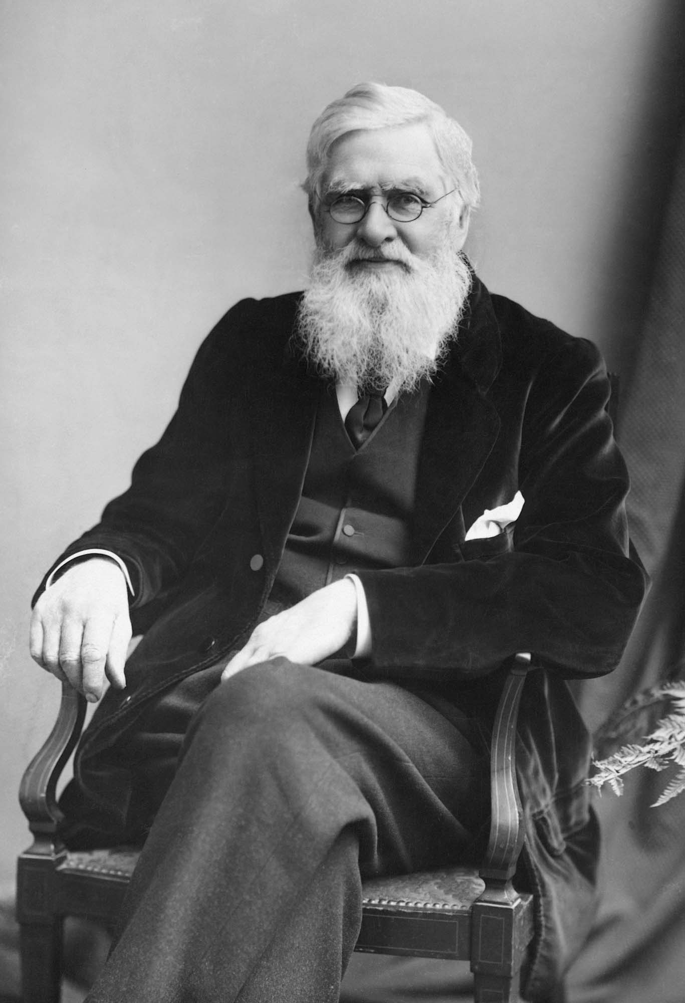 Alfred Russel Wallace circa 1895 - London Stereoscopic & Photographic Company