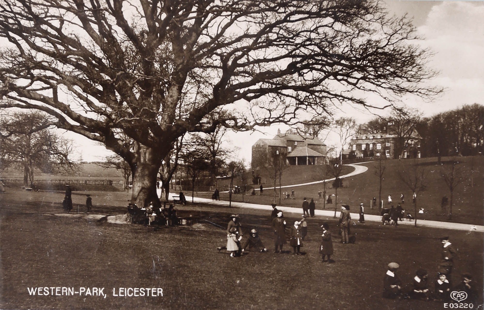 Children playing around the famous 'Old Major' tree, circa 1900 -